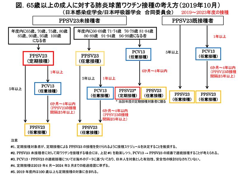 図1 65歳以上の成人に対する肺炎球菌ワクチン接種の考え方 2019.10